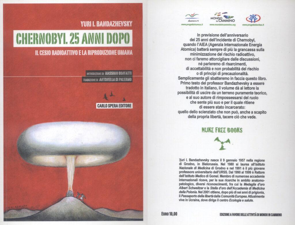 CHERNOBYL 25 ANNI DOPO